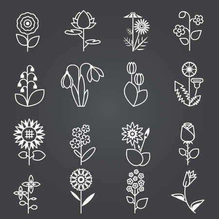 Flowers - set of isolated vector white line icons . Flat colorful vector illustration.