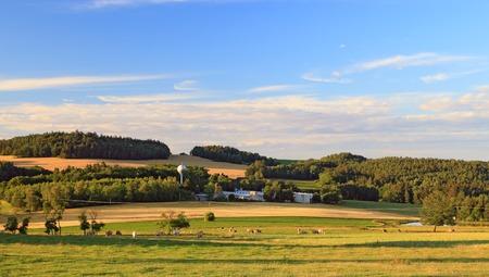 Spring landscape in sunny day. Rural countryside near Benesov city in Czech Republic. Stok Fotoğraf