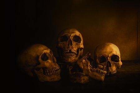 haunt: skulls head still life with warm light and candle light for halloween day. human skulls head after died.