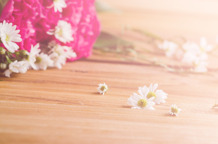 seective focus on white flower on wood has been processed vintage stlye and pink flower background Stock Photo