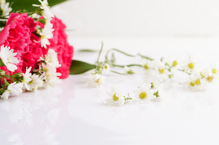 selective focus on small white flower with yellow pollen. representative of love, pure