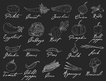 Big set elements with hand drawn vegetables on a chalkboard background. Vector icons in black and white sketch style. Hand drawn isolated objects with lettering titles Vectores