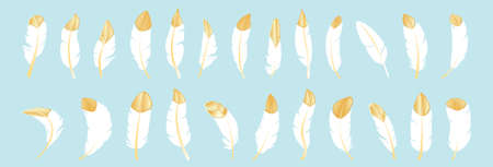 set of feather modern cartoon icon design template with various models. vector illustration isolated on blue background