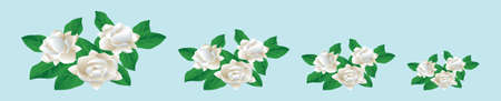 set of jasmine flowers cartoon icon design template with various models. vector illustration isolated on blue background 向量圖像