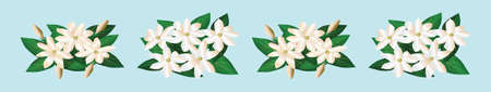 set of jasmine flowers cartoon icon design template with various models. vector illustration isolated on blue background 版權商用圖片 - 157298753