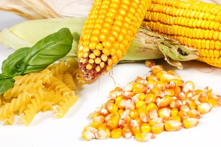 Fresh corn on a white background
