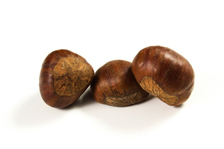 chestnuts on a white background photo