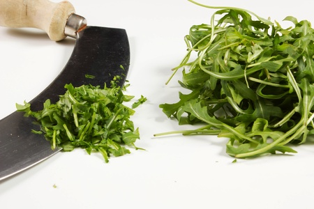 rucola on a white background photo