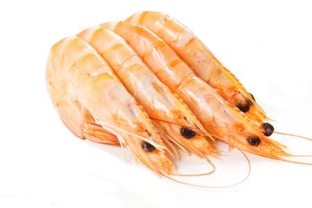 shrimps on a white background Stock Photo