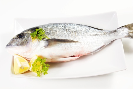 sea bream on a white background with lemon Stock Photo - 17720497
