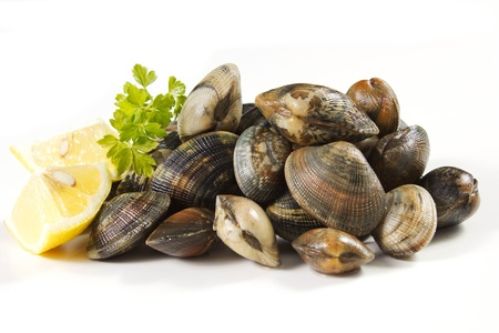 clams on a white background with lemon Stock Photo