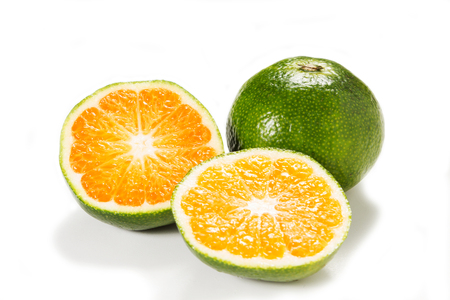 Green sweet tangerines growing in Goa isolated on white background photo