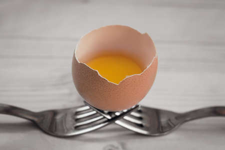 recurrence: Open egg resting on two steel forks