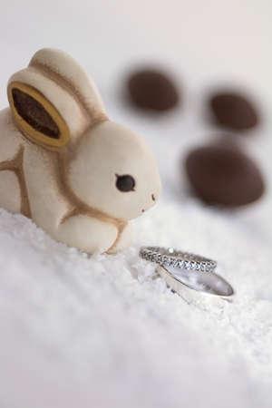 ring engagement: primer piso de un intento de conejo mirando anillos de compromiso