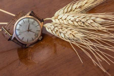 wrist strap: Old wrist watch on a wooden base