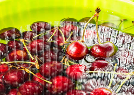 immersed: cherries immersed in water Stock Photo
