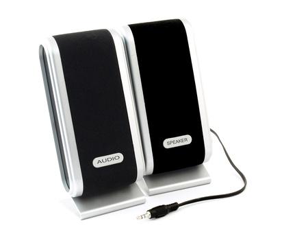 Acoustic stereo speakers for desktop computer