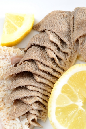 entrails of stomach of beef cooked in salted water with lemon juice called trippa tripe Stock Photo - 20355225