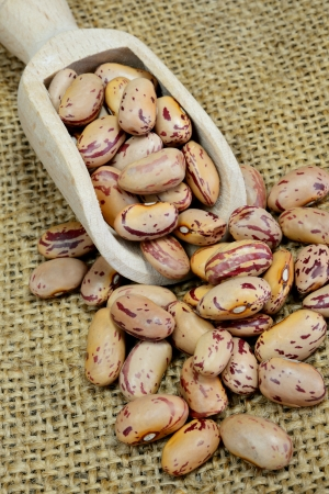 red dried beans on sack background called borlotti Archivio Fotografico