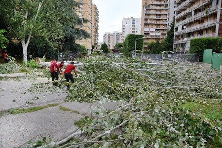 ensures: NAPLES, ITALY- JULY 10: After collapse of large trees, due to the bad weather and the lack of maintenance, firefighters ensures the elimination trunk that blocks the passage on the roads.  on  july 10, 2014 in Naples Editorial