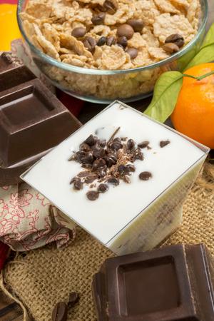 lowfat: low-fat plain yogurt creamy with bitter chocolate