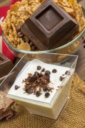 yogurt natural: baja en grasa cremosa yogur natural con chocolate amargo Foto de archivo