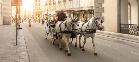 taxi famous building: VIENNA, AUSTRIA - JULY 31, 2015: horse carriage accompany tourists visiting the city of Vienna on  july 31, 2015 in Vienna