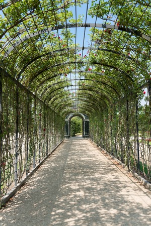 schoenbrunn: VIENNA - AUGUST 3: Garden of Schoenbrunn Castle Sissi. Since 1996 the palace and the garden have been declared World Heritage by UNESCO. on august 3.2015 in Wien