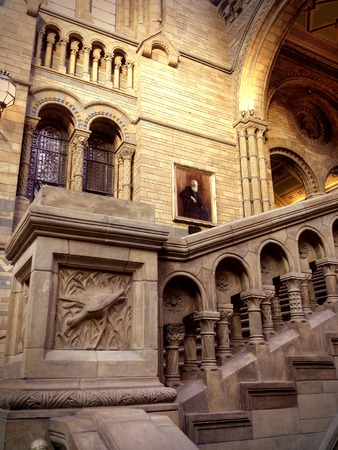 mineralogy: LONDON - DECEMBER 8: Natural History Museum home to about 70 million exhibits organized into five main collections: botany, entomology, mineralogy, paleontology and zoology on december 8, 2015 in London