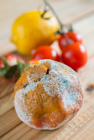 stinks: mandarin with mold on the wooden table Stock Photo
