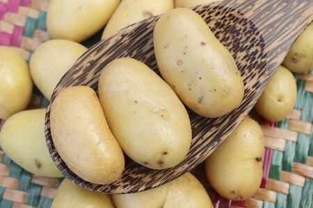 closeup: Closeup of fresh small potatoes Stock Photo