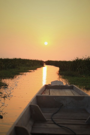 wooden boat: Sunrise at the lake with silhouette bushes and wooden boat Stock Photo
