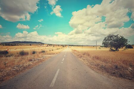 Country road and dry landscape in summer