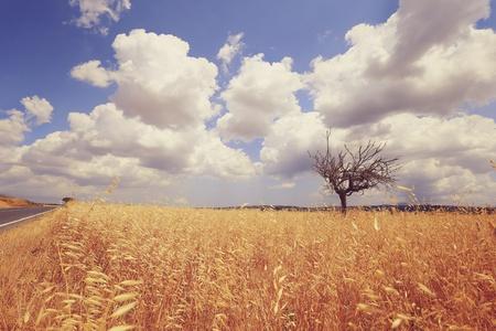 фото сельской голй