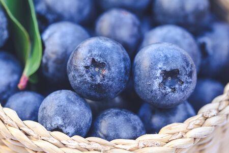 Closeup of Blueberries summer fruit