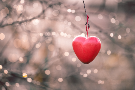 love tree: Love concept, heart shape love symbol hanging on branch tree in vintage and grainy style with copy space