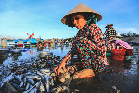 Mui ne - Vietnam - January 22, 2019 : Local vendor is collecting fishes and shelles at famous fishing village in Mui ne, Vietnam