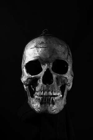 skull on black Reklamní fotografie