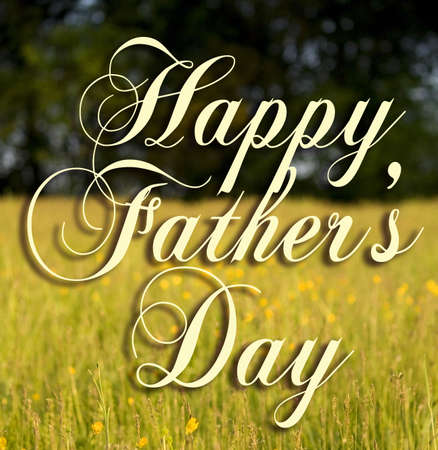 Happy Fathers Day type on a field background.