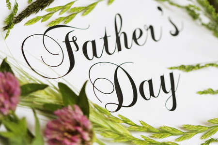 Fathers Day script text with meadow grass and clover. Stok Fotoğraf