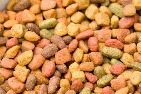 Close-up of variety type dry cat food. photo