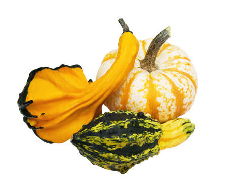 gourds: Three colorful autumn gourds with clipping path.