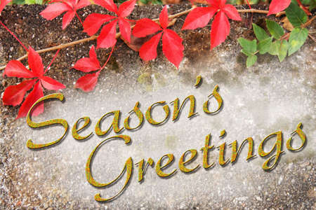 Seasons Greetings type with autumn background photo