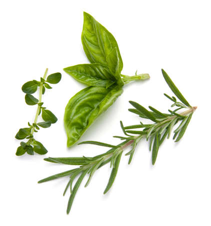 Close-up of fresh herbs isolated on white.
