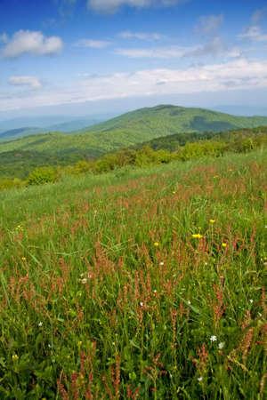 Max のパッチをハゲの牧草地からアパラチア山脈の眺め。 写真素材