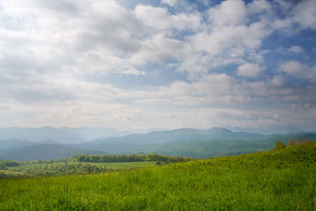 max: View of Appalachian Mountains from Max Patch Bald.