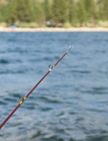 fishing pole: Fishing pole with water, shore and trees in background.