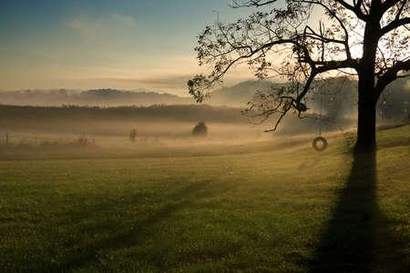 Temprano en la mañana paisaje de Tennessee en el refugio de vida silvestre de siete islas  Foto de archivo - 7981386