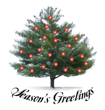 Seasons Greetings script type met pijn boom en rode kerst bollen