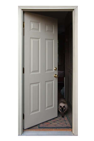 An open door with a cat walking out. photo